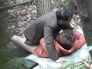 Chinese Daddy Forest 33